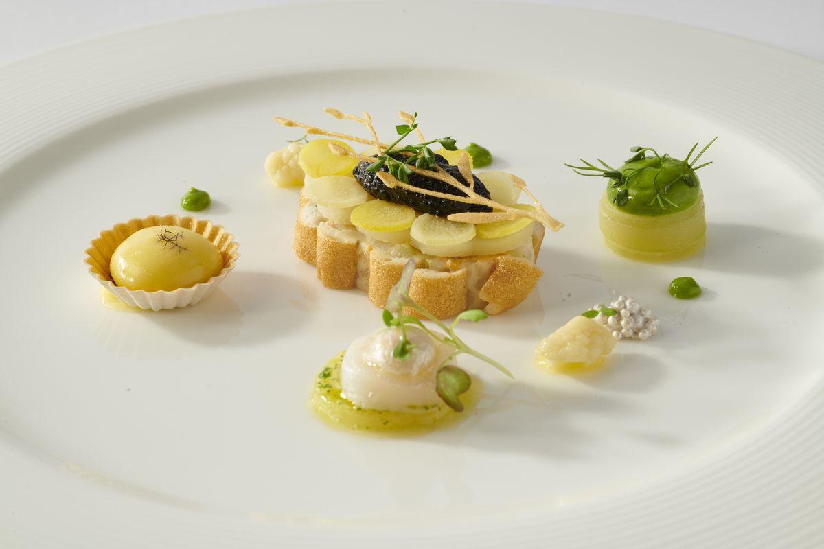 CHARTREUSE DU NORD - chartreuse crustacés et chou-fleur, salade tempérée du marché, Saint Jacques et courgettes confites, peau de pomme de terre croustillante